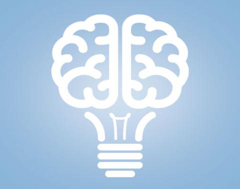 Innovation Institute Brain